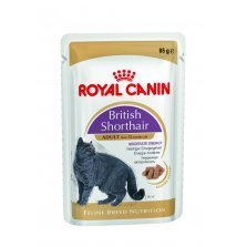Royal Canin Feline British Shorthair 12x85g