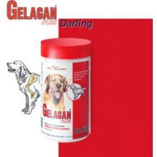 GELACAN PLUS DARLING